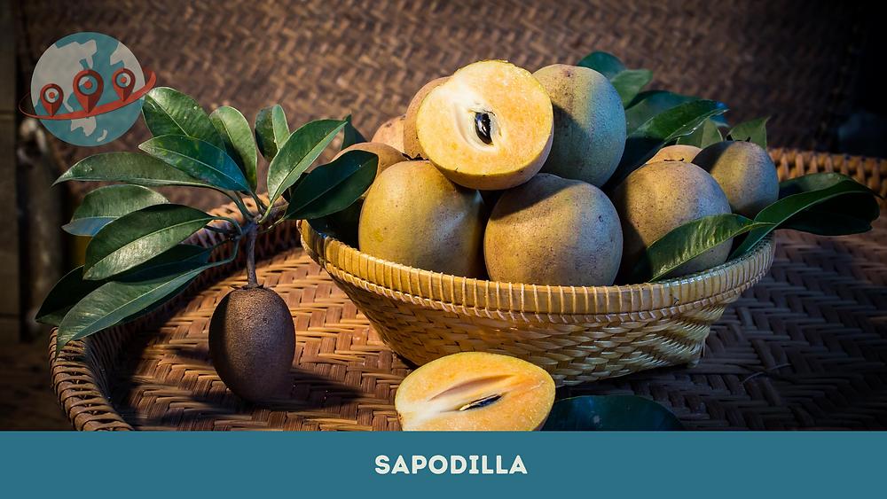 sapodilla