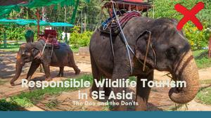 Wildlife tourism Asia