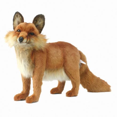 Hansa - Fox Standing