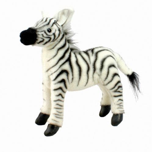 Hansa - Zebra