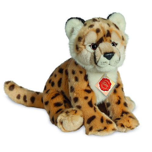 Hermann - Cheetah sitting