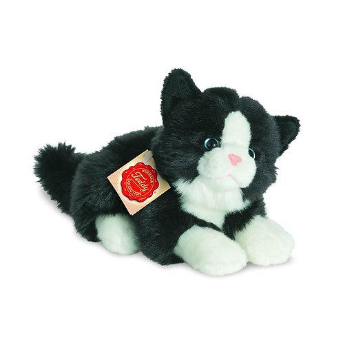 Hermann - Black and white cat