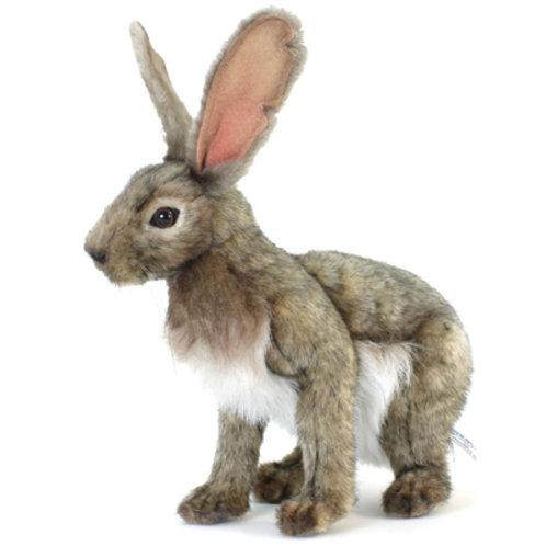 Hansa - Jack Rabbit 30cmL