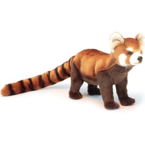 Hansa - Red Panda