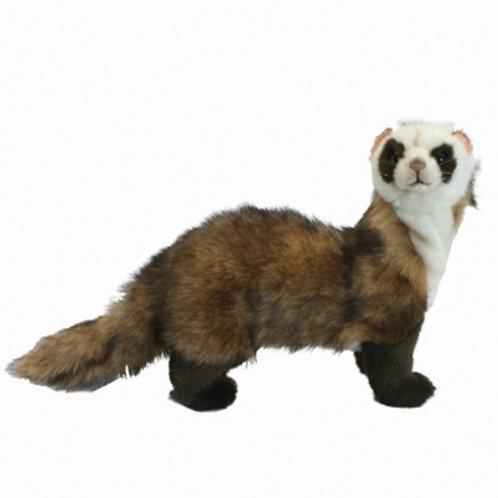 Hansa - Ferret Standing