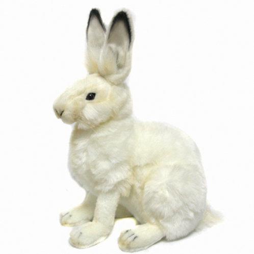 Hansa - White Hare