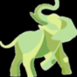 MYN-ELEPHANT-PHOTO+COLORS_0005_MYN-EU-CO