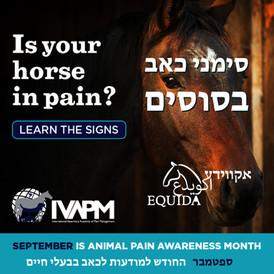 חודש המודעות לכאב בבעלי חיים