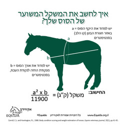 How_To_Estimate_Horse_Weight-Equid