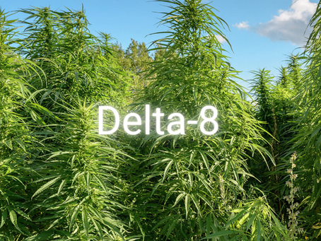 Delta 8 Gets Popular, regulation follows. Our thoughts.