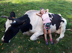La vie à la ferme !