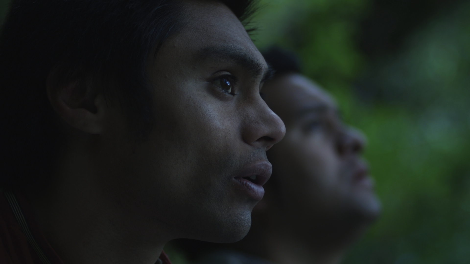 The Huia (2011)