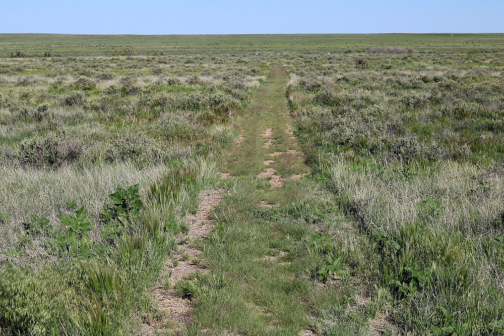 A portion of the Santa Fe Trail at Timpas, Colorado. There is a small picnic area on the north side of the highway at Timpas, operated by the Comanche National Grassland. Visitors can access a portion of the trail from the picnic area.
