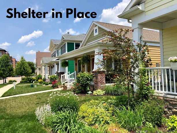 Shelter in Place by Teresa Compton. Houses in a residential neighborhood with green lawns and flowers.