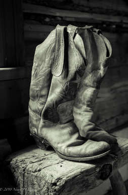 boots_nancycarrollpng