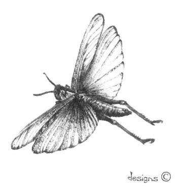 Grasshopper Designs - Jill Schwarz