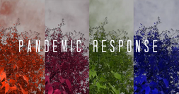 Pandemic Response by Chris Smith & Joseph DePasquale. Trees in different color panels.