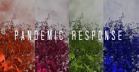 Pandemic Response by Chris Smith & Joseph DePasquale