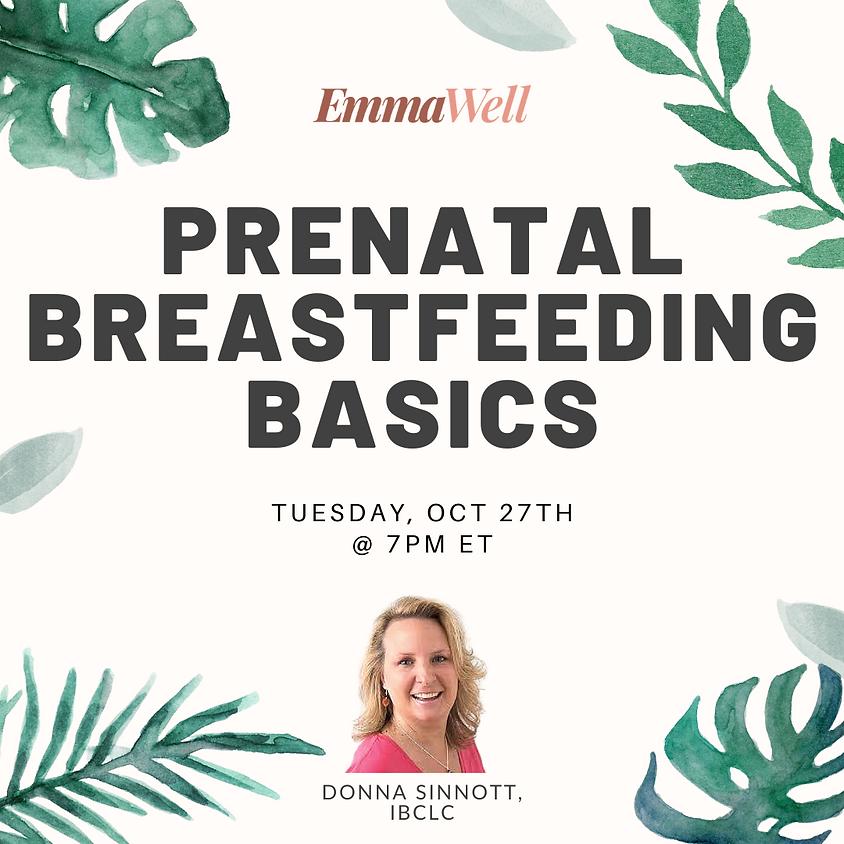 Prenatal Breastfeeding Basics