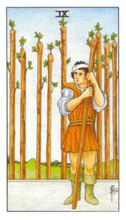 9 de Paus como Arcano do Dia