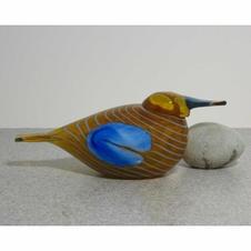 Blue Scaup Duck  $350