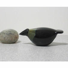 Black Baby Crow  $295