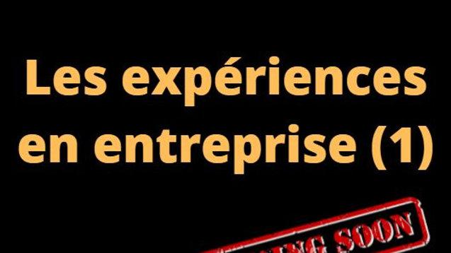 """Expériences """"en Entreprise"""""""