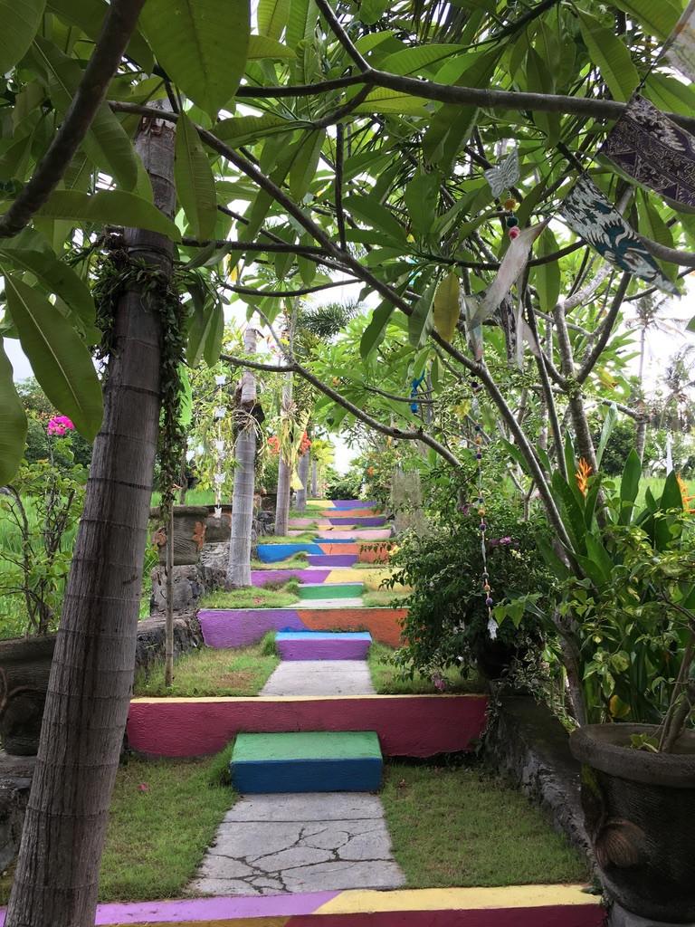 Bunter Mittelweg auf Bali