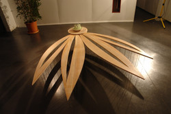 Floating Lotus Petals 2