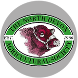 NDS Logo.png