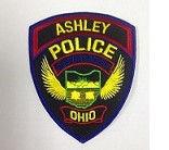 VOA.Police.Badge (2).JPG