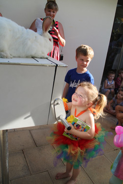 brisbane area magic show for kids