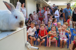 nickleby magic show rabbit party magician