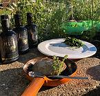 foodfreaks-mitera-olivenoel-2-1024x682.j