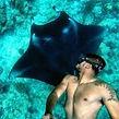 Sidey the shark.jpg