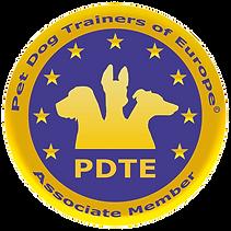 PDTE Associate Member_edited_edited.png