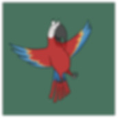 Fun Facts about the Scarlet Macaw