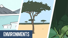 Learn about the worlds environments