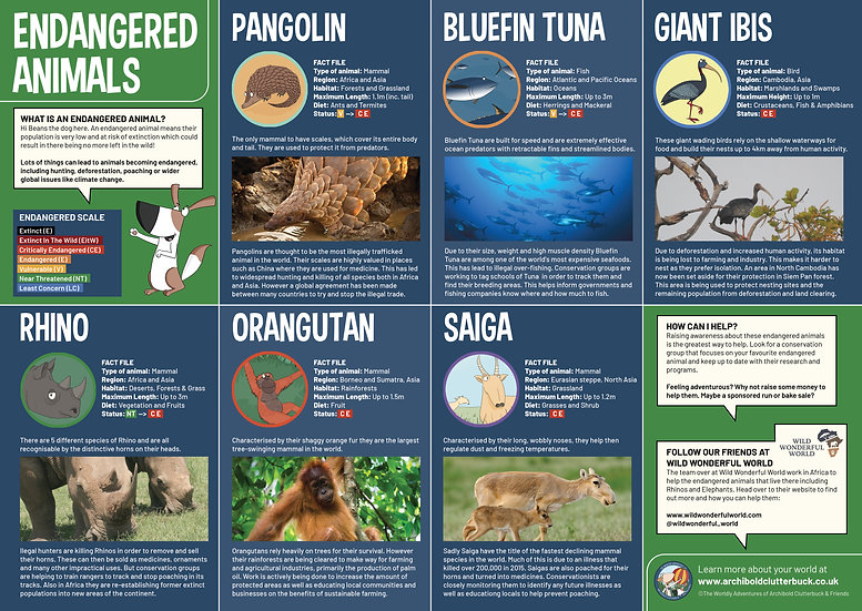 Endangered Animals A2 Poster