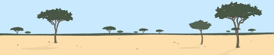 savannah environment