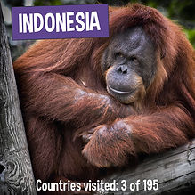 Fun Facts about Indonesia - Kaias Worldly Adventure