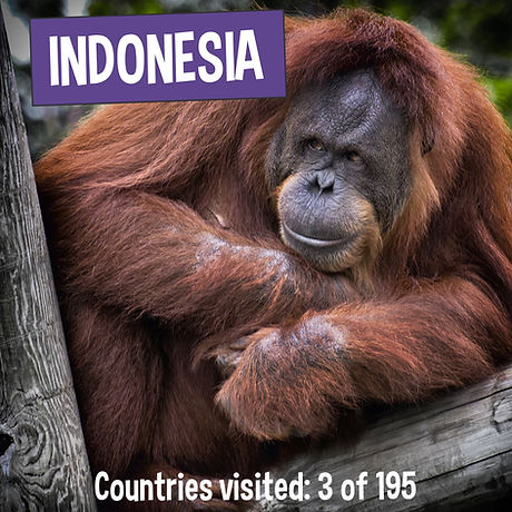 Fun Facts about Indonesia - Kaia's Worldly Adventure