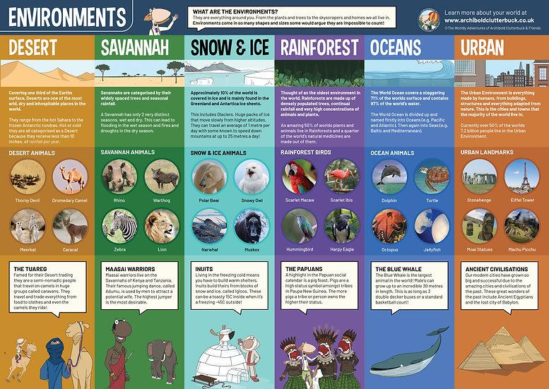 Environments A2 Poster