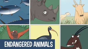 Fun facts on endangered animals