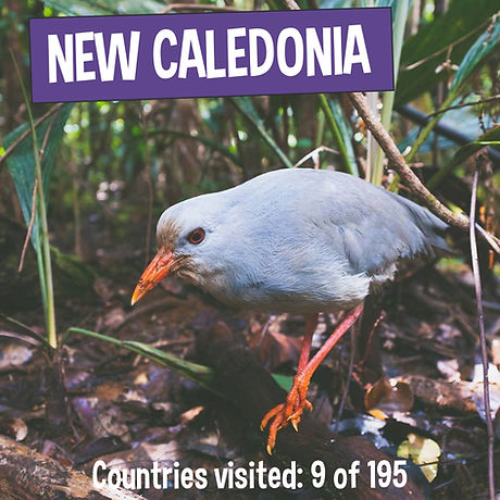 Fun Facts about New Caledonia - Kaia's Worldly Adventure