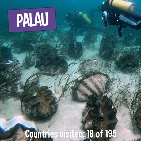 Palau - Giant Clam