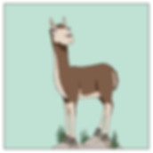 Fun Facts about the Llama