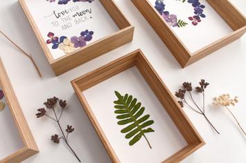 Herbiers - Atelier Sauvage