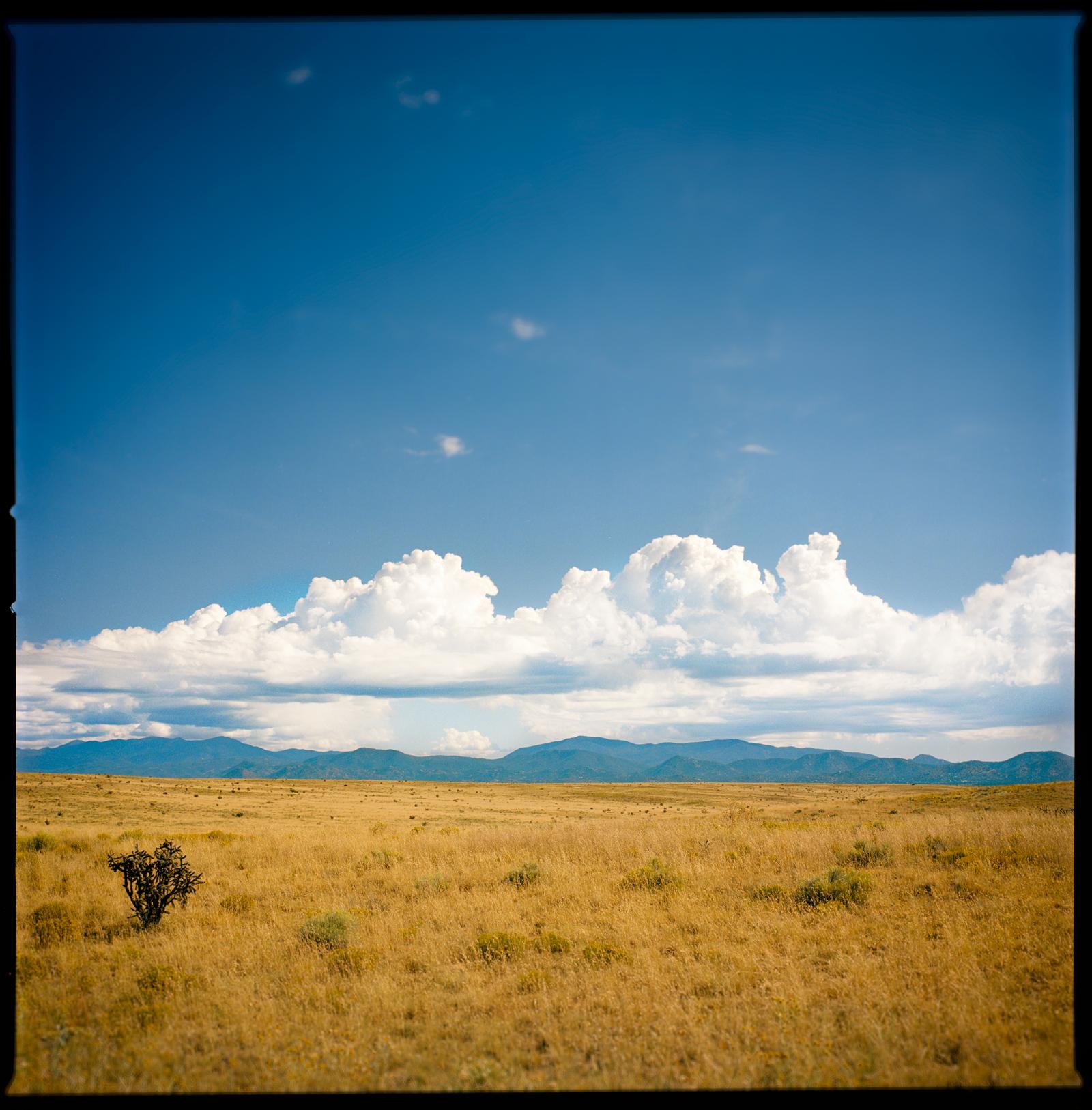 Western Plains