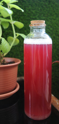 Blueberry Enzyme Drink